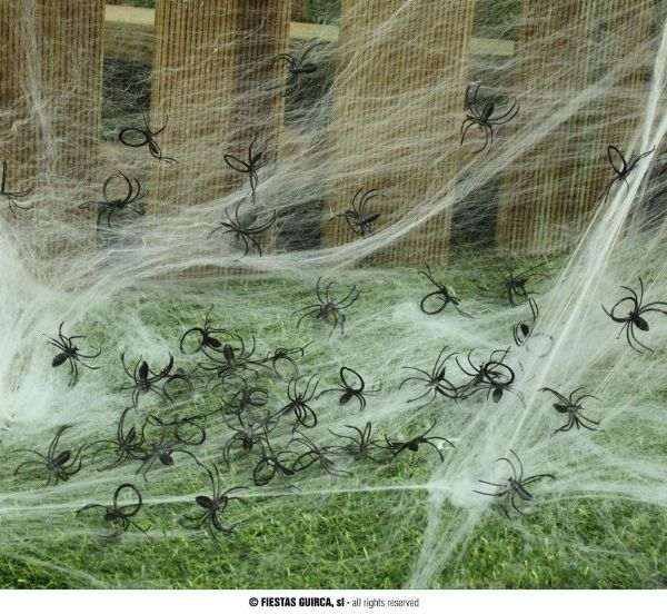 BAG: 50 SPIDERS